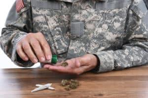 Veterans & Marijuana