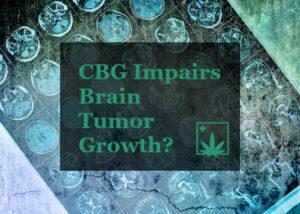 CBG Brain Tumor